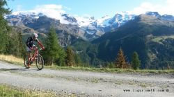 Mountain Bike in Val d'Ayas